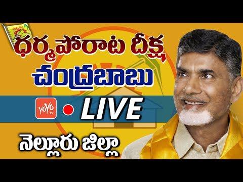 Chandrababu LIVE | TDP Dharma Poratam Live From Nellore | AP News | YOYO TV Channel