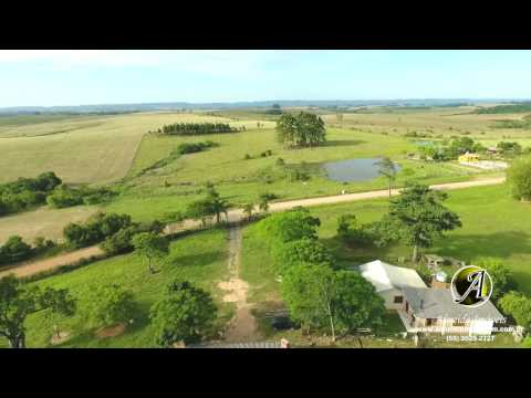 Campo a venda com 56 hectares município de Dilermando de Aguiar