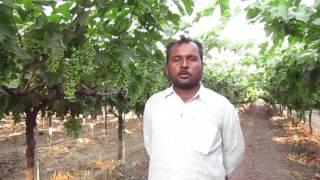 Solapur Laxman manikrao gantade