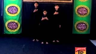 Bhenr Aai Hai Sham Tun, Zeeshan Haider 2013 14