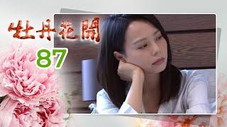牡丹花開 第 087集
