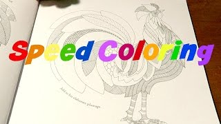 Adult Coloring Book Time Lapse
