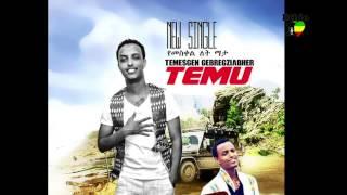 Temesgen Gebregziabher - Yemeskel Let Mata