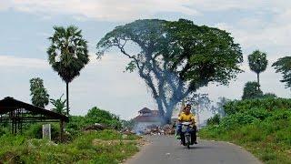 Myeik Myanmar  city photo : Walking in Myeik (Myanmar)