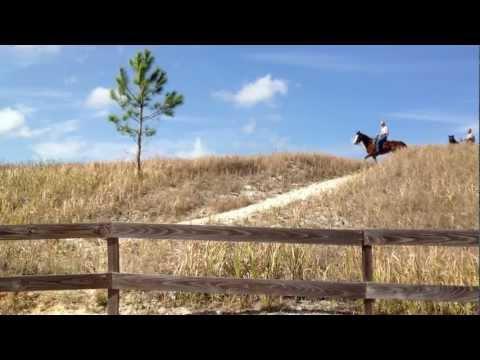 Horseback Riding at Mosaic Peace River Park, Homeland/ Fort Meade, Florida