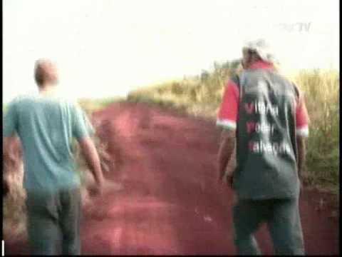 Bandidos assaltam empresa em Marialva