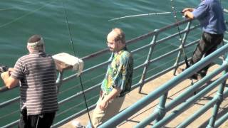 Skippy At The Pier...With Shay Carl