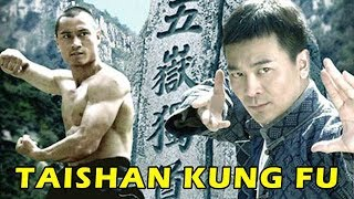 Download Video Wu Tang Collection - Taishan Kung Fu (Kung Fu from Tai Mountain) English Subtitled MP3 3GP MP4