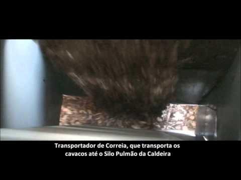 Pátio de Cavacos - processamento, movimentação e alimentação de biomassa em caldeiras