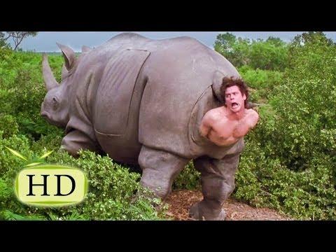 Эйс Вентура 2 — «Я маленький любопытный носорог» - эпизоды, цитаты из к/ф (9/15)