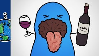 Why Does Wine Make Your Mouth Feel Dry? by MinuteEarth