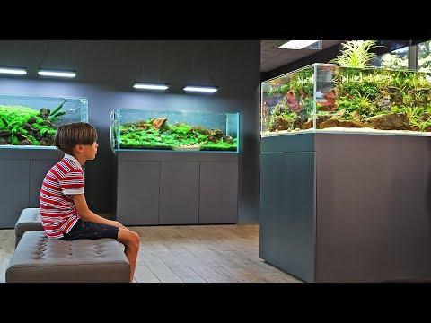 AQUASCAPE HEAVEN - Green Aqua v2.0_Akvárium. Heti legjobbak
