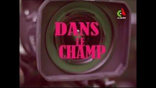 Dans le Champ: Métier... commissaire de festival du cinéma- Canal Algérie