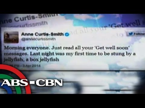 ann curtis - Anne Curtis-Smith was rushed to the hospital after she was stung by a box jellyfish while shooting an episode of