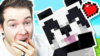 I Found BABY PANDAS in Minecraft Hardcore!