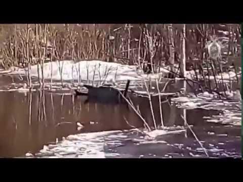 Затонувший вездеход в Печоре