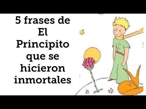Frases celebres - 5 frases de El Principito que seguro que conoces
