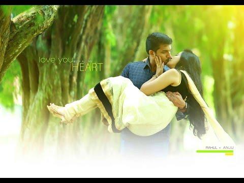 Ne Partha Vizhigal (Rahul + Anju Post Wed)