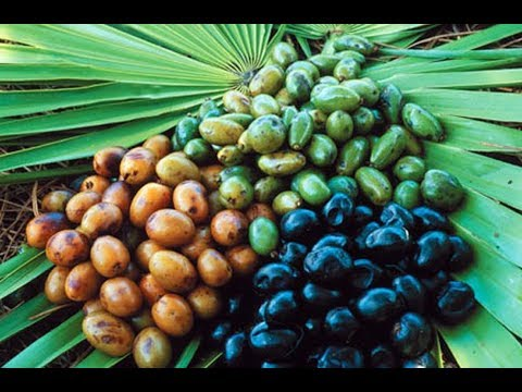 Saw Palmetto May Help With Benign Prostatic Hyperplasia, BPH, Urinary Tract Symptoms, Prostate
