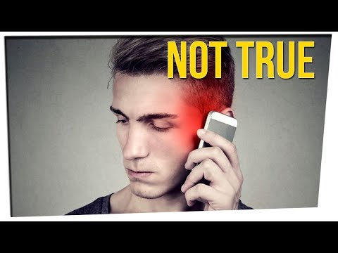 Widely Believed 'Facts' That Are Untrue!? ft. Steve Greene & DavidSoComedy