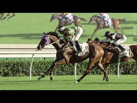 [Jockey Club Day 2020] Jockey Club Cup 2020 race replay