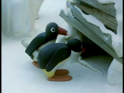Pingu - Message in a bottle