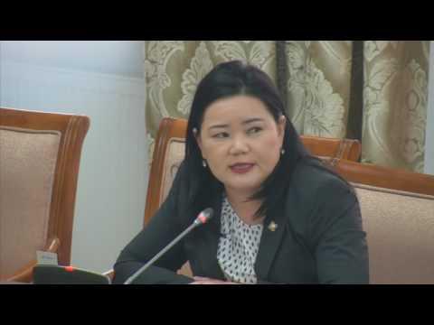 Н.Амарзаяа: ЖДҮ-ийг хөгжүүлэх сангийн үйл ажиллагааг Хөгжлийн банктай адилтгахад хүрлээ