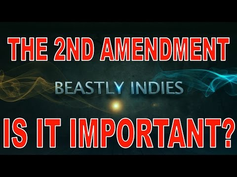 BEASTLY INDIE'S IS THE 2ND AMENDMENT IMPORTANT? GUN RIGHTS!