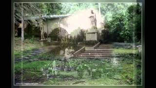 История парка Динамо