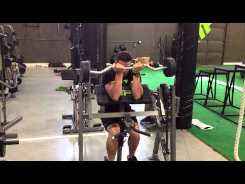 EZ Bar Preacher Curl
