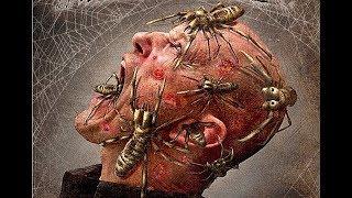 Video 骆驼蜘蛛(蓝光超高清恐怖电影) MP3, 3GP, MP4, WEBM, AVI, FLV Juli 2018