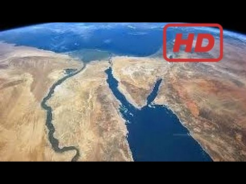 Documentary Wild Nile - Paradise Found | Nat Geo Wild [Hd]