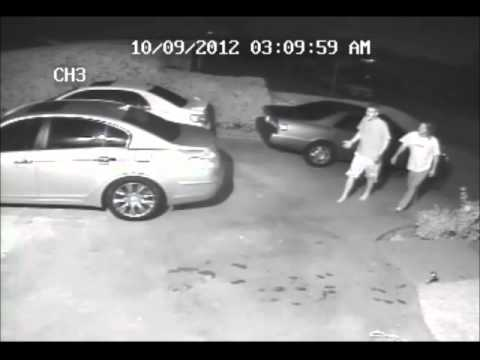 Video Coyote Attack - Graphic -  Coyotes attack dog in Fountain Valley California download in MP3, 3GP, MP4, WEBM, AVI, FLV January 2017