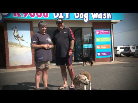 Satisfied k9000 Dog Wash customers