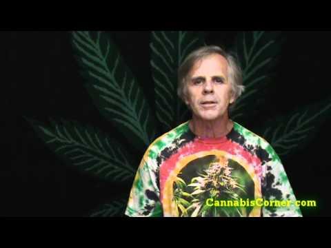 Cannabis Pest Control