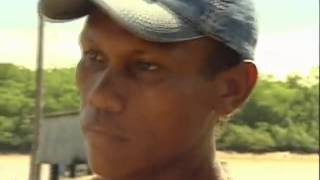 Video GLOBO REPÓRTER - O Mar da Amazônia - Amapá (05.10.2007) COMPLETO MP3, 3GP, MP4, WEBM, AVI, FLV Januari 2019