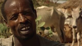 El Milagro del Agua en África (documental completo)