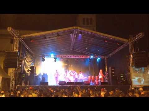 carnaval 2014 em pirapetinga com renatinho da bahia