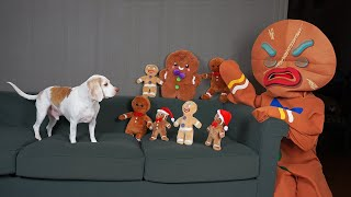 Dog vs Gingerbread Man Army Prank: Funny Dogs Maymo & Potpie Christmas Pranks by Maymo