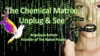 The Chemical Matrix Talk: Unplug & See