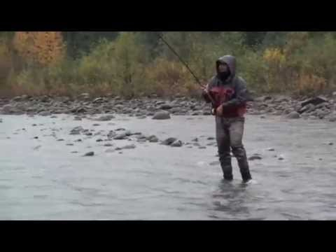 Steelhead – The Battle