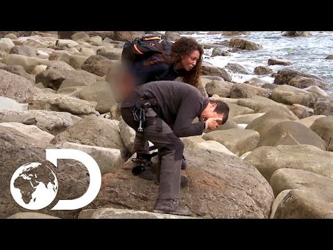 Video Mel B Pees on Bear's Hand! | Running Wild with Bear Grylls download in MP3, 3GP, MP4, WEBM, AVI, FLV January 2017