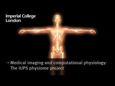 IUPS Physiome Projekt