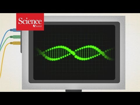 Why do some genes turn on after death? (видео)