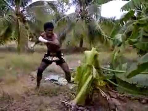 泰拳表示:已經阻止不了泰國人討厭香蕉的事情了