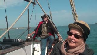Saldanha South Africa  City new picture : south africa-bird island-saldanha bay - boat trip in der Bucht und Besuch der Vogelinsel