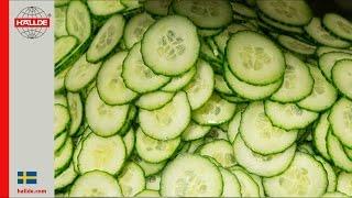 Cucumber: Slicer 2 mm
