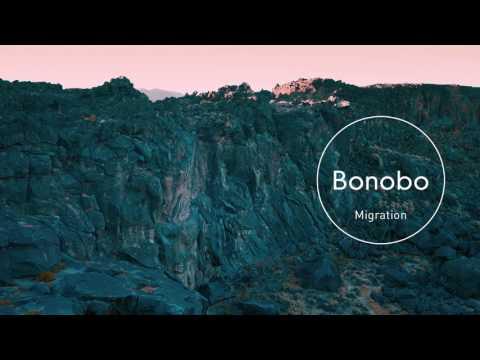 Bonobo : Surface (feat. Nicole Miglis)