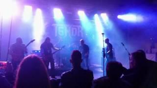 Video Tendr - Live 2016-11-19
