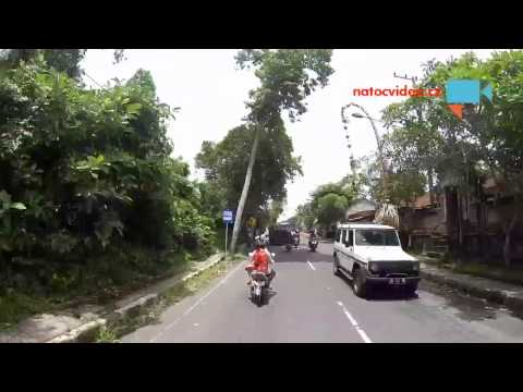 Preprava zvirat na Bali